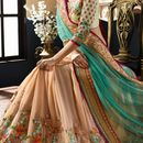 parth  collection saree