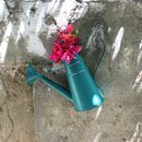 Watering Can Flower Pot._Gd194