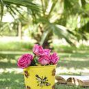Aasra Decor Handpainted Planter with Bee & Flower Metal Patch ADPLT18 Set of 3