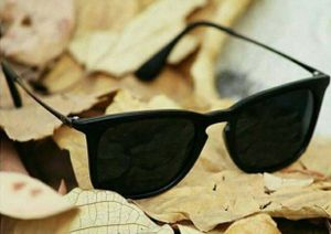 Brown super style sunglasses 2410