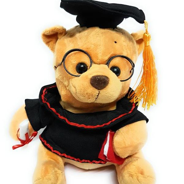 Musical LaywerVakil Brown Dog Teddy Bear By CGB with Glasses for Kids 23 CM